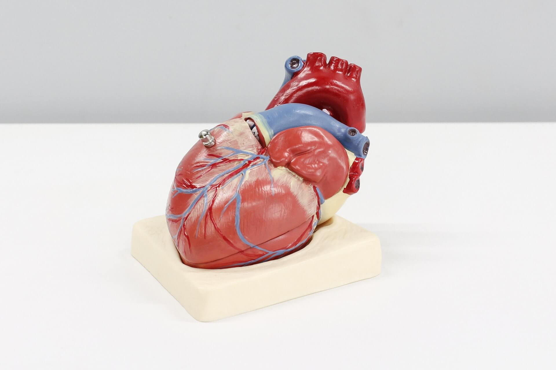 心筋保護液の投与方法